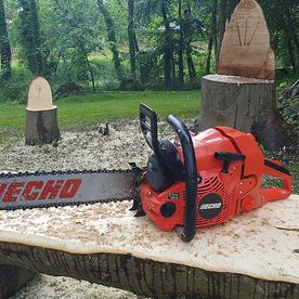 Echo Chainsaw and Garden Furniture Carving